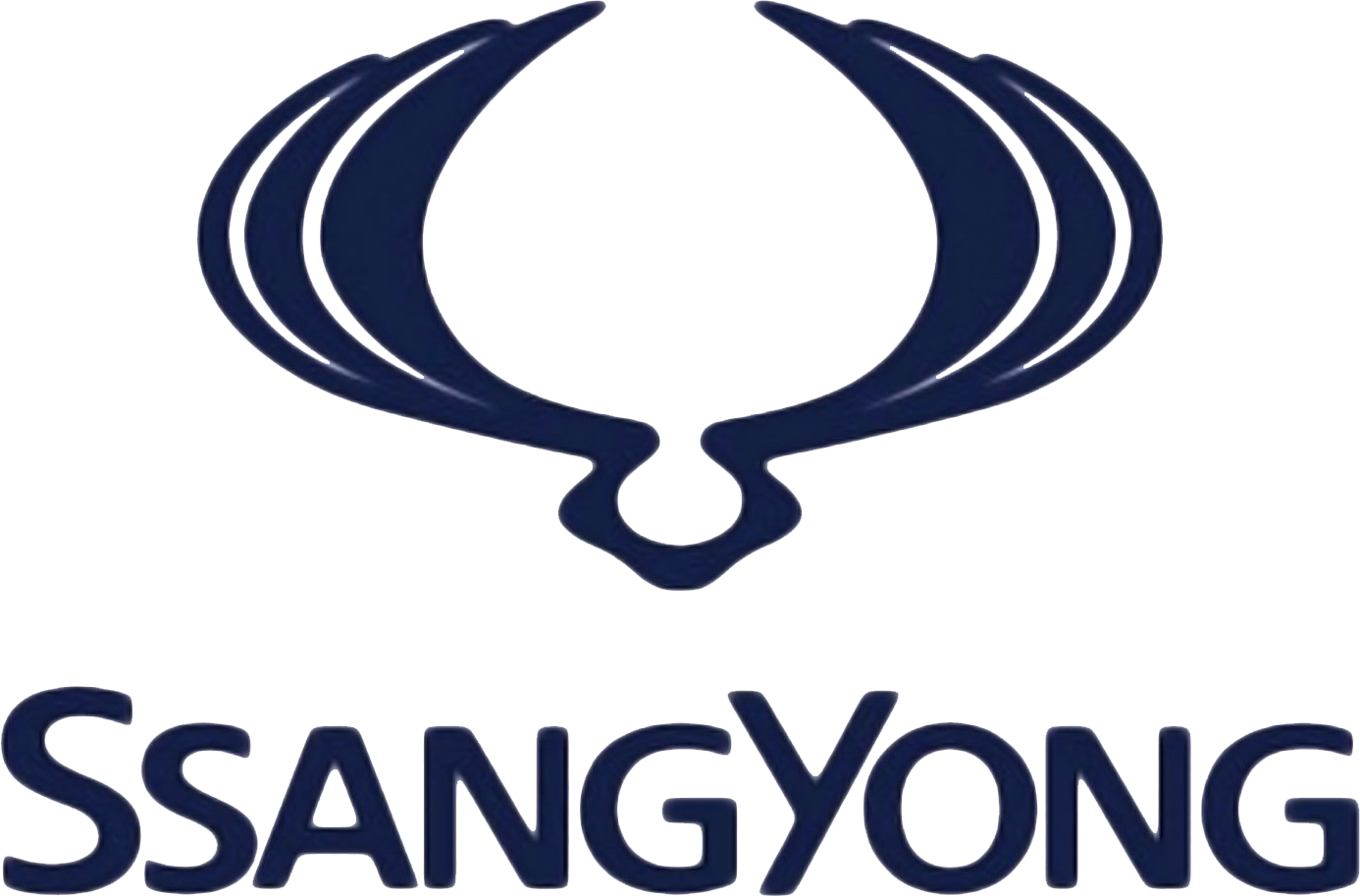 Ssangyong_tuning